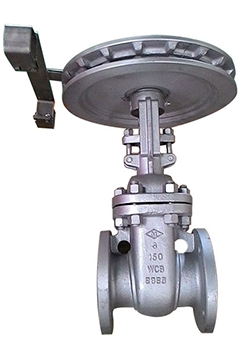 Stainles steel Gate valves