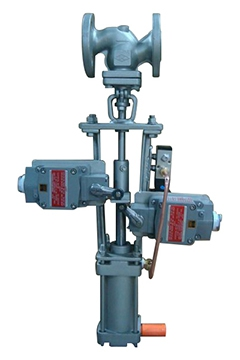 Stainles steel Globe valves