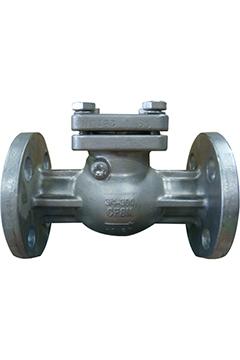 Swing check valves 300#
