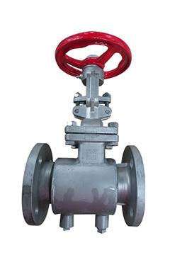 Semi jacket gate valves